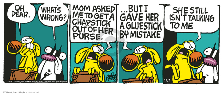 Comic Strip Mike Peters  Mother Goose and Grimm 2019-12-02 stick