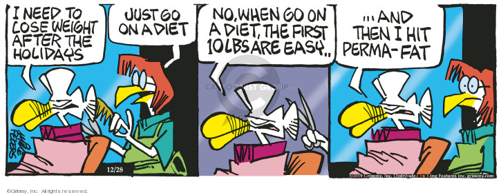 Comic Strip Mike Peters  Mother Goose and Grimm 2019-12-28 loss