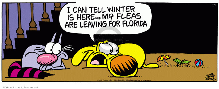 Comic Strip Mike Peters  Mother Goose and Grimm 2020-01-01 winter