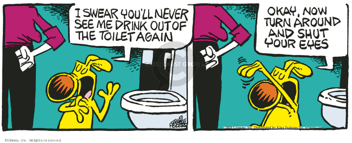 Comic Strip Mike Peters  Mother Goose and Grimm 2020-03-05 toilet