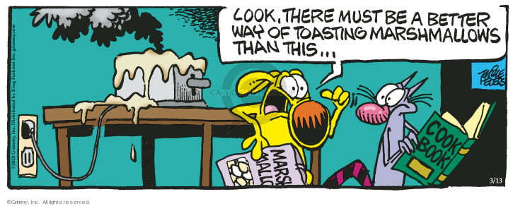 Comic Strip Mike Peters  Mother Goose and Grimm 2020-03-13 cook