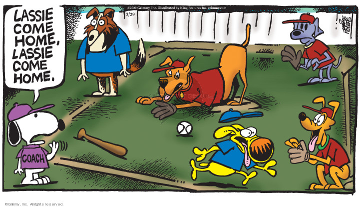 Comic Strip Mike Peters  Mother Goose and Grimm 2020-03-29 baseball