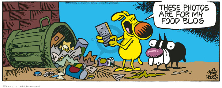Comic Strip Mike Peters  Mother Goose and Grimm 2020-06-11 food waste