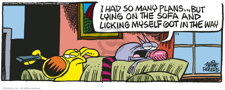 Comic Strip Mike Peters  Mother Goose and Grimm 2020-07-04 mother