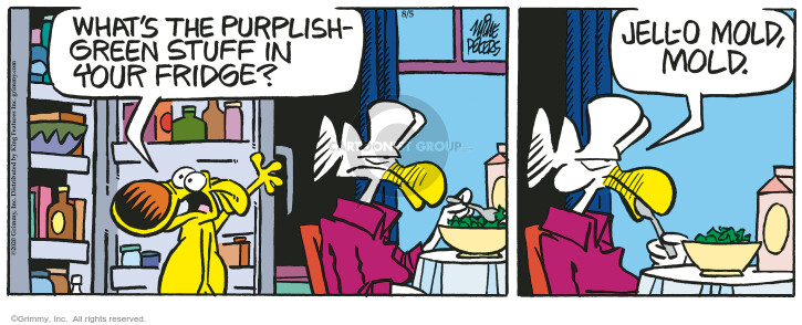 Comic Strip Mike Peters  Mother Goose and Grimm 2020-08-05 food safety