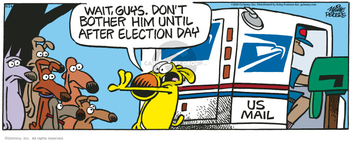 Comic Strip Mike Peters  Mother Goose and Grimm 2020-08-24 2020 election