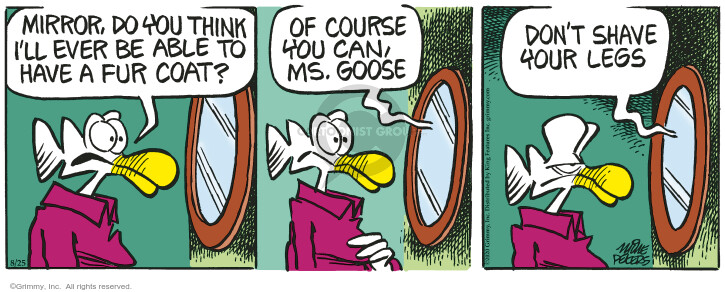 Comic Strip Mike Peters  Mother Goose and Grimm 2020-08-25 aspiration