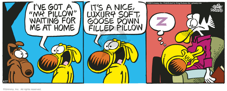 Comic Strip Mike Peters  Mother Goose and Grimm 2020-08-27 bedding