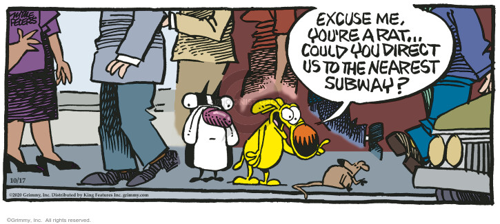 Comic Strip Mike Peters  Mother Goose and Grimm 2020-10-17 mother