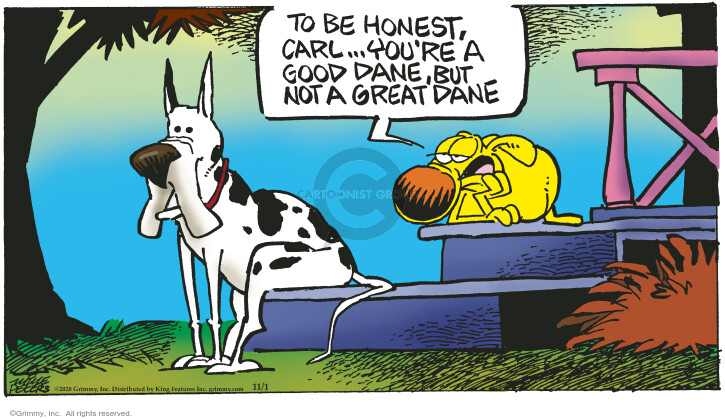 Comic Strip Mike Peters  Mother Goose and Grimm 2020-11-01 but