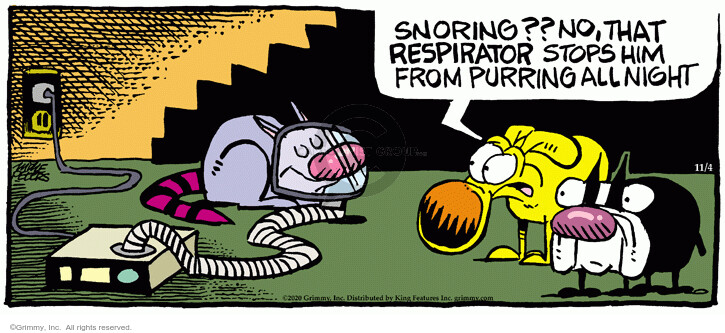 Comic Strip Mike Peters  Mother Goose and Grimm 2020-11-04 sleep