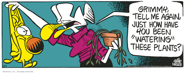 Comic Strip Mike Peters  Mother Goose and Grimm 2020-12-02 strip