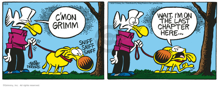 Comic Strip Mike Peters  Mother Goose and Grimm 2020-12-04 strip