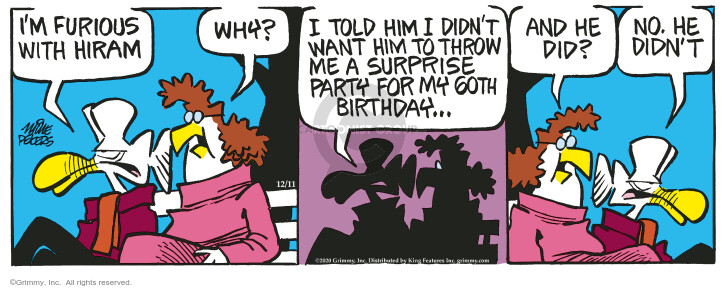 Comic Strip Mike Peters  Mother Goose and Grimm 2020-12-11 party