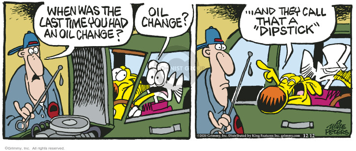 Comic Strip Mike Peters  Mother Goose and Grimm 2020-12-12 automobile maintenance