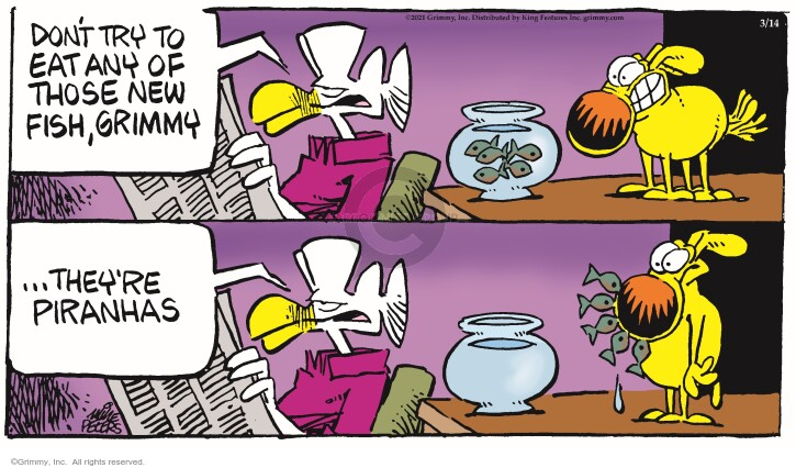 Comic Strip Mike Peters  Mother Goose and Grimm 2021-03-14 don't