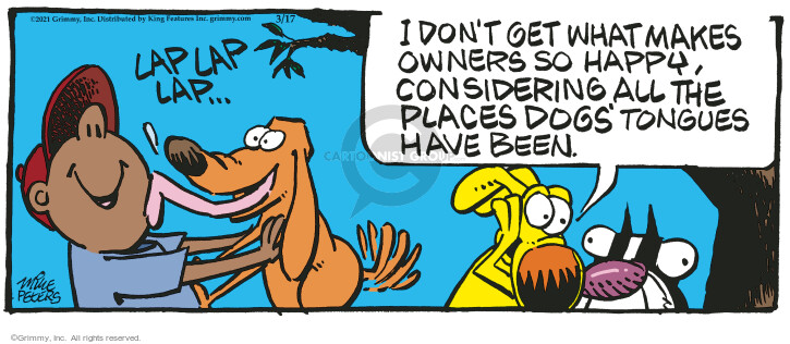 Comic Strip Mike Peters  Mother Goose and Grimm 2021-03-17 dog
