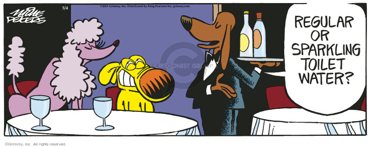 Comic Strip Mike Peters  Mother Goose and Grimm 2021-05-04 restaurant server