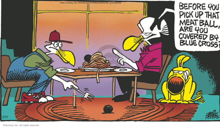 Comic Strip Mike Peters  Mother Goose and Grimm 2021-05-23 health
