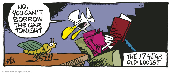 Comic Strip Mike Peters  Mother Goose and Grimm 2021-05-27 tonight