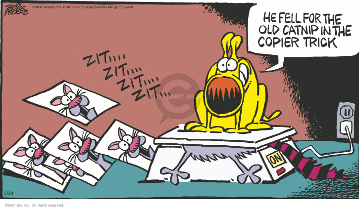 Comic Strip Mike Peters  Mother Goose and Grimm 2021-05-30 cat