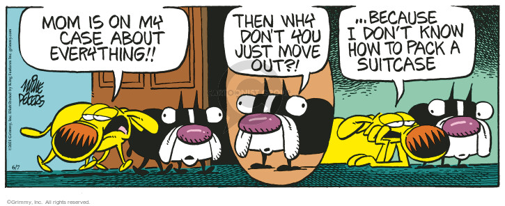 Comic Strip Mike Peters  Mother Goose and Grimm 2021-06-07 mom
