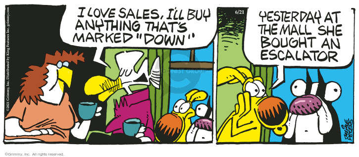 Comic Strip Mike Peters  Mother Goose and Grimm 2021-06-21 shopper