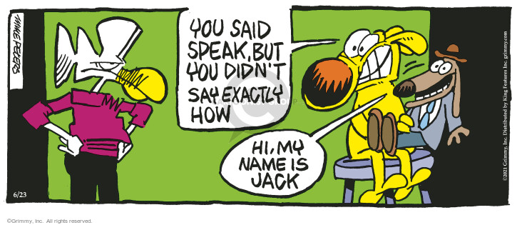 Comic Strip Mike Peters  Mother Goose and Grimm 2021-06-23 you