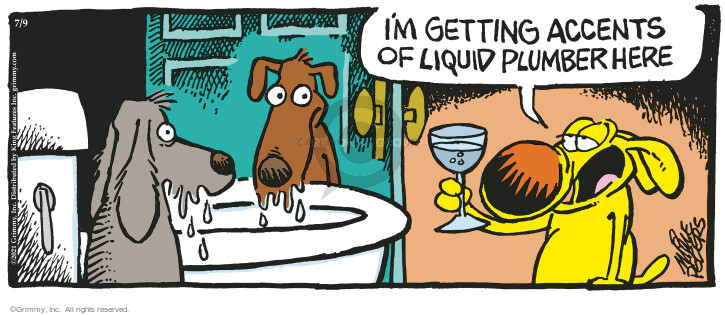Comic Strip Mike Peters  Mother Goose and Grimm 2021-07-09 drink