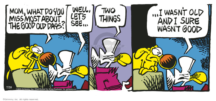 Comic Strip Mike Peters  Mother Goose and Grimm 2021-07-20 mom