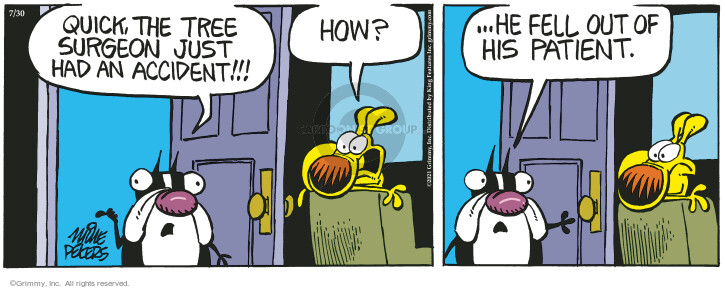 Comic Strip Mike Peters  Mother Goose and Grimm 2021-07-30 have