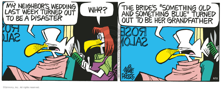Comic Strip Mike Peters  Mother Goose and Grimm 2021-08-11 why