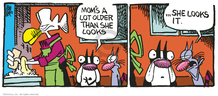 Comic Strip Mike Peters  Mother Goose and Grimm 2021-08-19 mom
