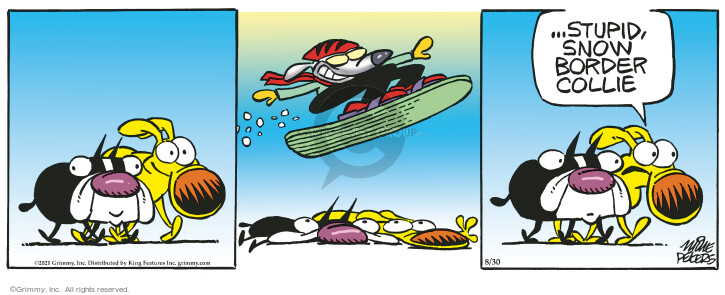 Comic Strip Mike Peters  Mother Goose and Grimm 2021-08-30 sport