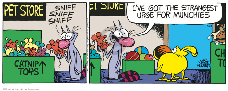Comic Strip Mike Peters  Mother Goose and Grimm 2021-09-22 get