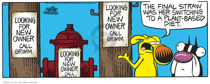 Comic Strip Mike Peters  Mother Goose and Grimm 2021-09-23 look