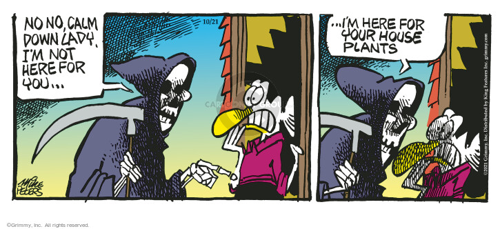 Comic Strip Mike Peters  Mother Goose and Grimm 2021-10-21 not