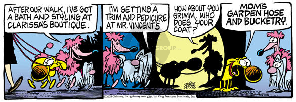 Comic Strip Mike Peters  Mother Goose and Grimm 2003-01-07 vanity