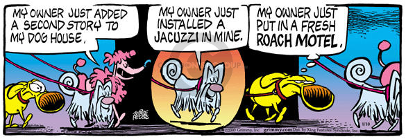 Comic Strip Mike Peters  Mother Goose and Grimm 2003-01-10 dog walk