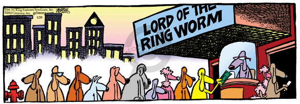 Lord of the Ring Worm.