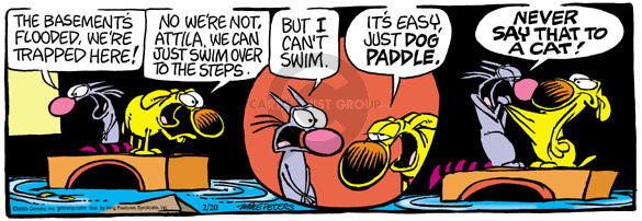 Comic Strip Mike Peters  Mother Goose and Grimm 2003-02-20 dog and cat