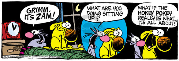 Comic Strip Mike Peters  Mother Goose and Grimm 2002-04-03 purpose