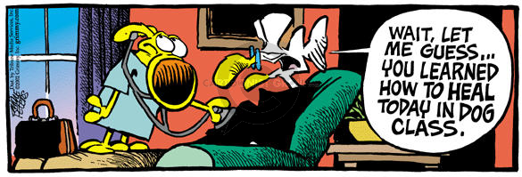 Comic Strip Mike Peters  Mother Goose and Grimm 2002-04-12 cure