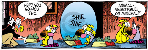 Comic Strip Mike Peters  Mother Goose and Grimm 2002-04-27 cat dog