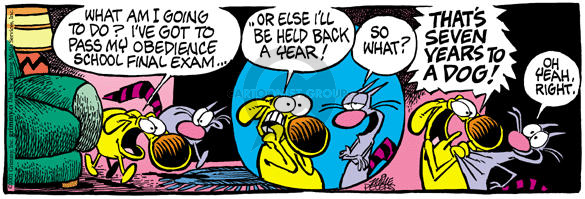 Comic Strip Mike Peters  Mother Goose and Grimm 2002-05-06 dog and cat
