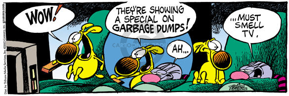 Comic Strip Mike Peters  Mother Goose and Grimm 2002-05-21 television viewer