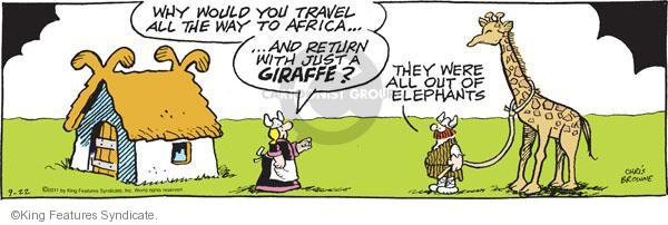 Why would you travel all the way to Africa � And return with just a giraffe? They were all out of elephants.