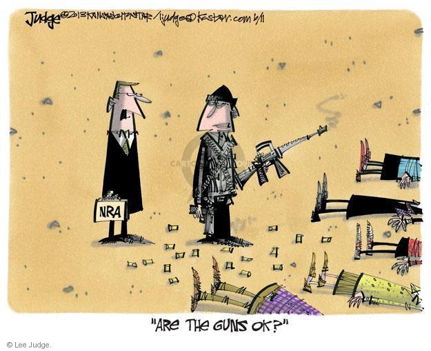 Lee Judge  Lee Judge's Editorial Cartoons 2013-06-11 assault weapon