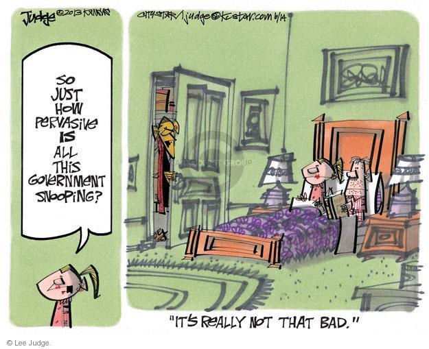 Lee Judge  Lee Judge's Editorial Cartoons 2013-06-14 privacy