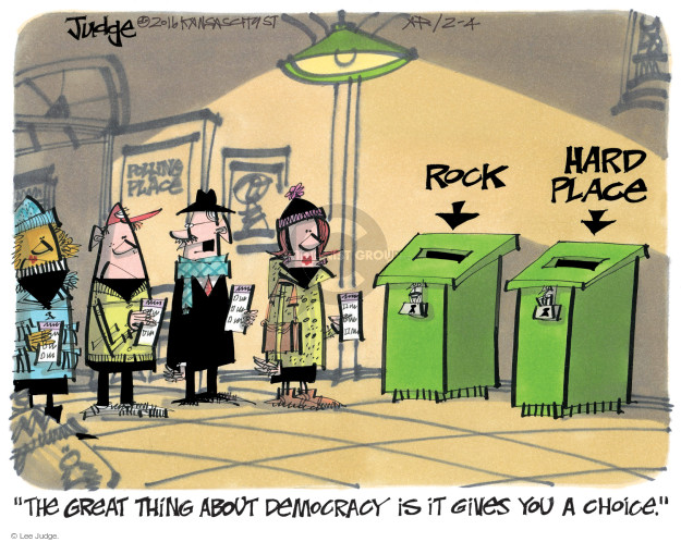 Lee Judge  Lee Judge's Editorial Cartoons 2016-02-04 voter